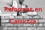 reformas_carricola.jpg